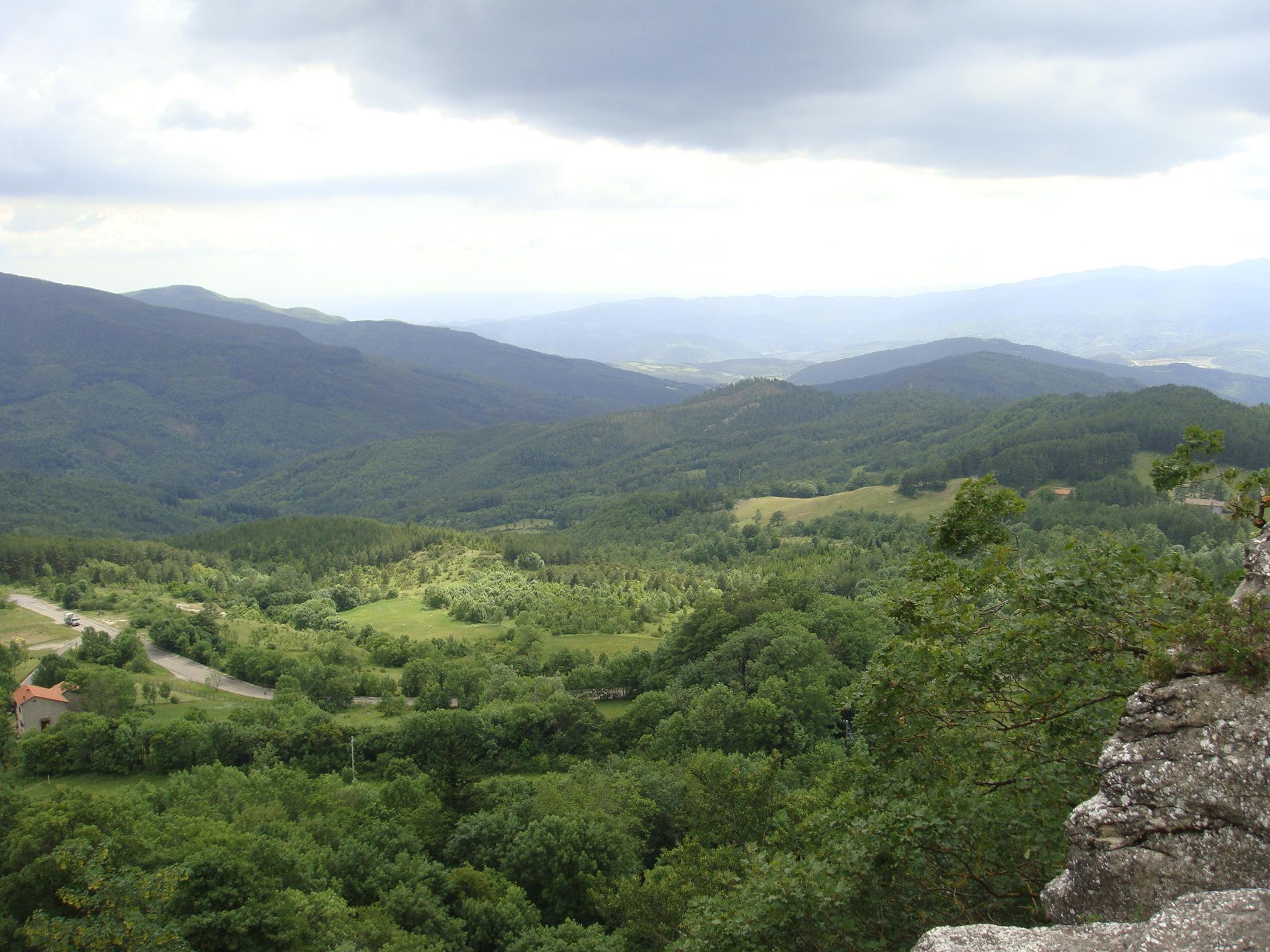 Assisi 2011 424