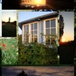 Collage stella Martutina