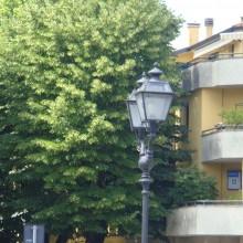 Assisi 2011 423