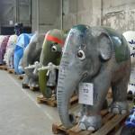 inden elefanter blev solgt blev nogle af dem samlet, så det var muligt at komme ind og se dem